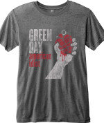 Green Day : American Idiot Vintage Gris 26,80€